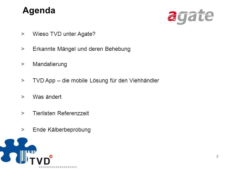 Agenda Wieso TVD unter Agate Erkannte Mängel und deren Behebung