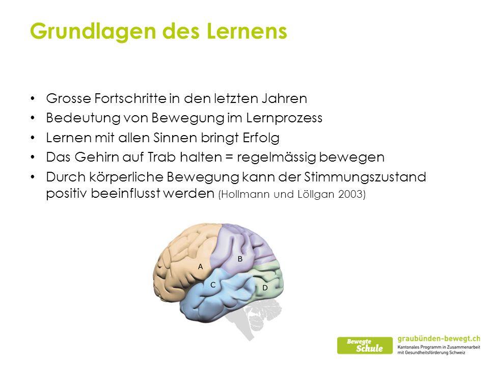 Grundlagen des Lernens