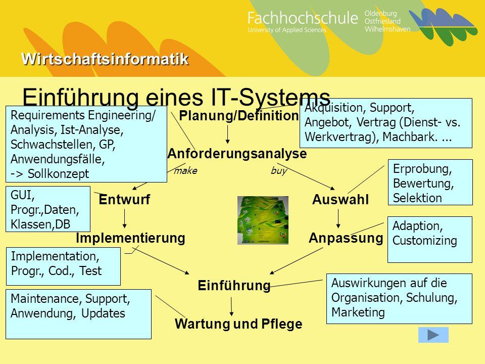 Einführung eines IT-Systems