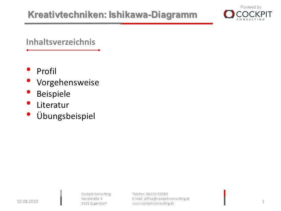 Inhaltsverzeichnis Profil Vorgehensweise Beispiele Literatur