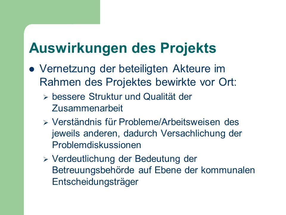 Auswirkungen des Projekts