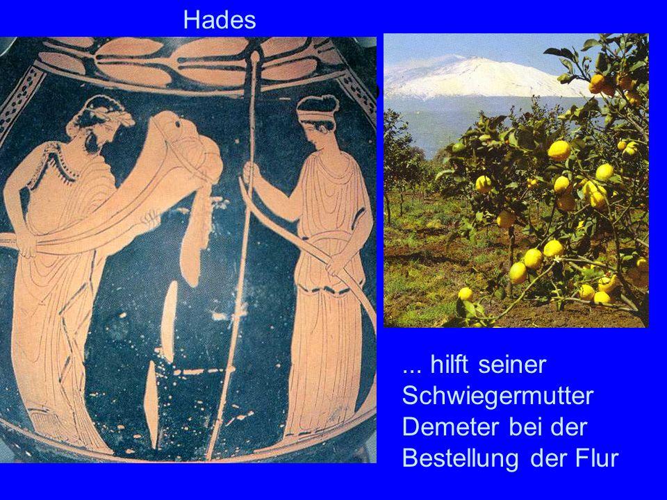 Hades arbeitet Hades ... hilft seiner Schwiegermutter Demeter bei der