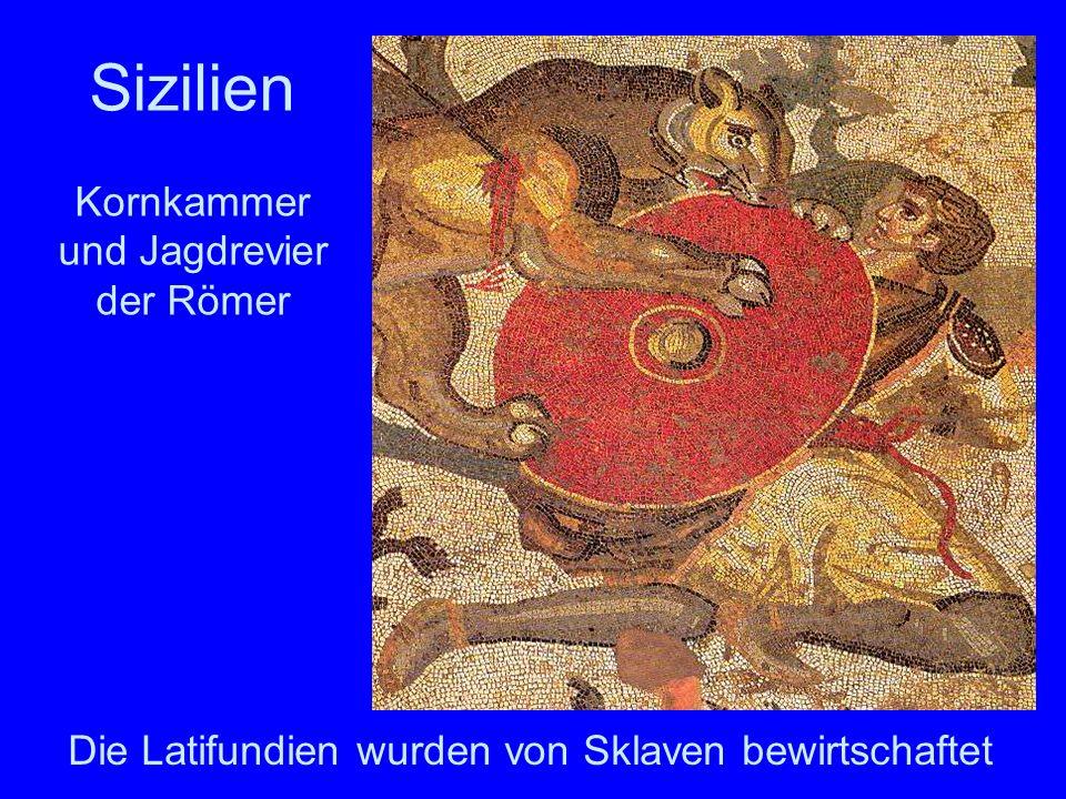 Kornkammer und Jagdrevier der Römer