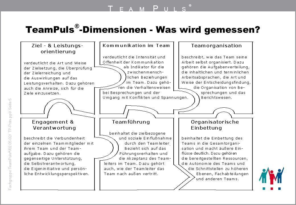 TeamPuls®-Dimensionen - Was wird gemessen