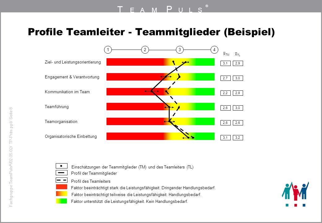 Profile Teamleiter - Teammitglieder (Beispiel)