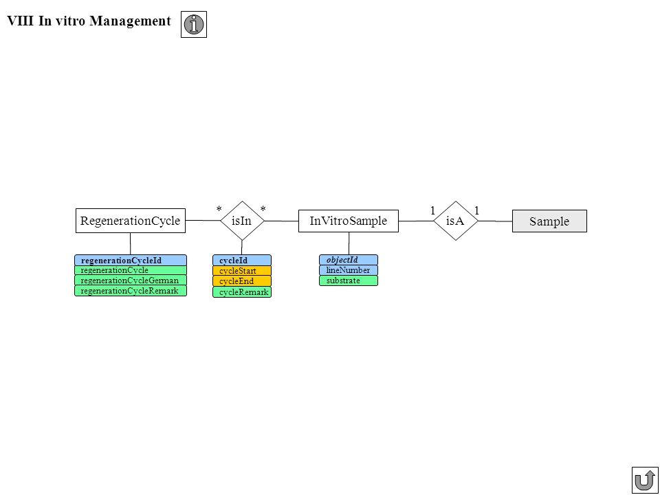 VIII In vitro Management