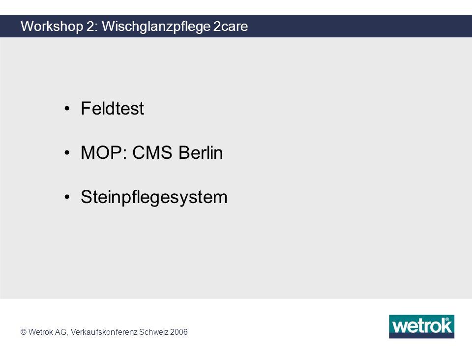 Workshop 2: Wischglanzpflege 2care
