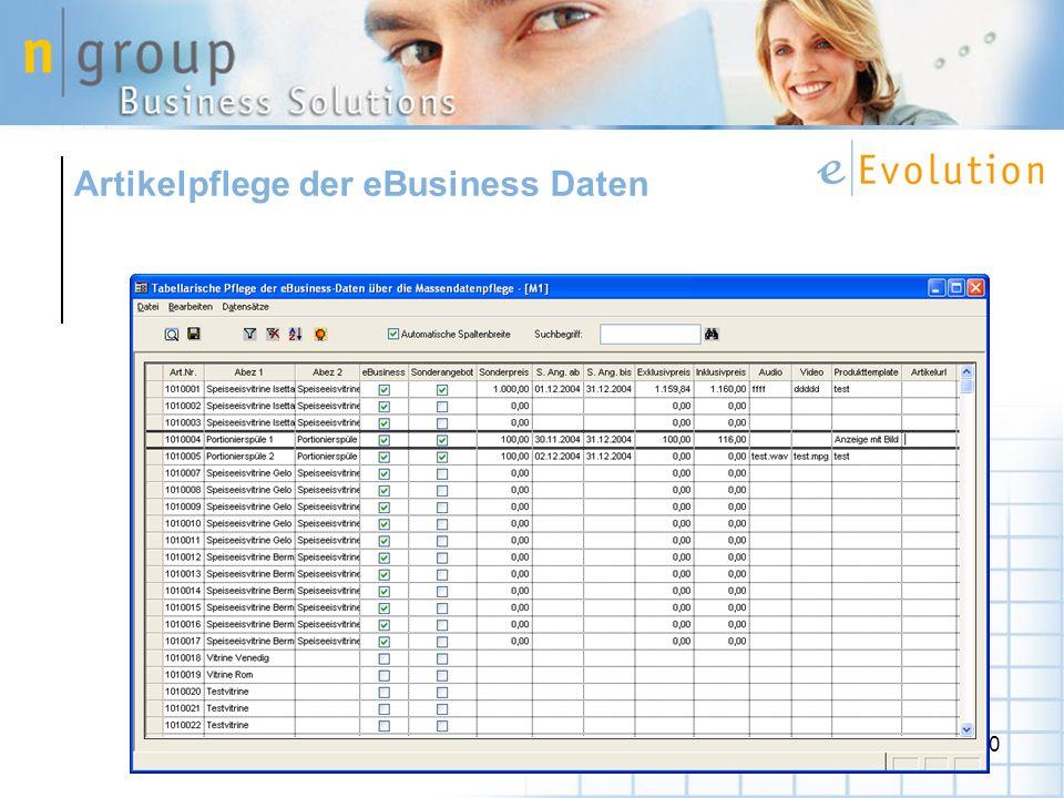 Artikelpflege der eBusiness Daten