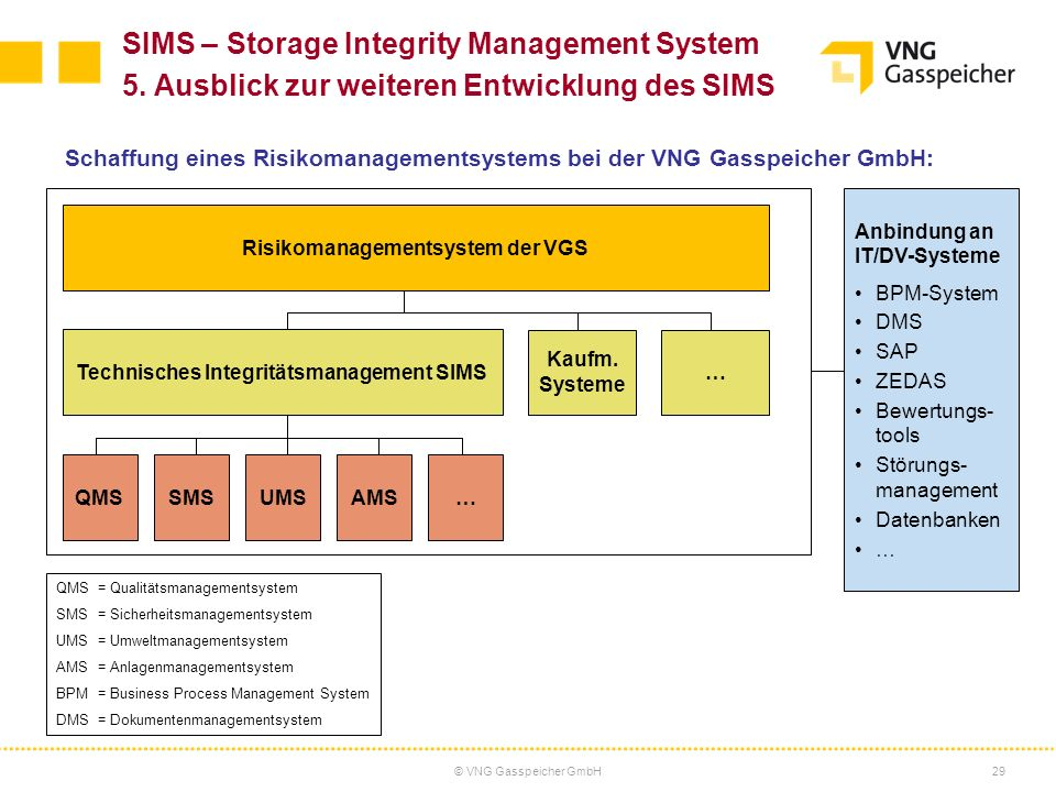 Risikomanagementsystem der VGS Technisches Integritätsmanagement SIMS