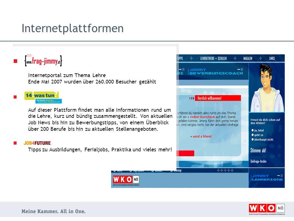 Internetplattformen Internetportal zum Thema Lehre Ende Mai 2007 wurden über 260.000 Besucher gezählt.