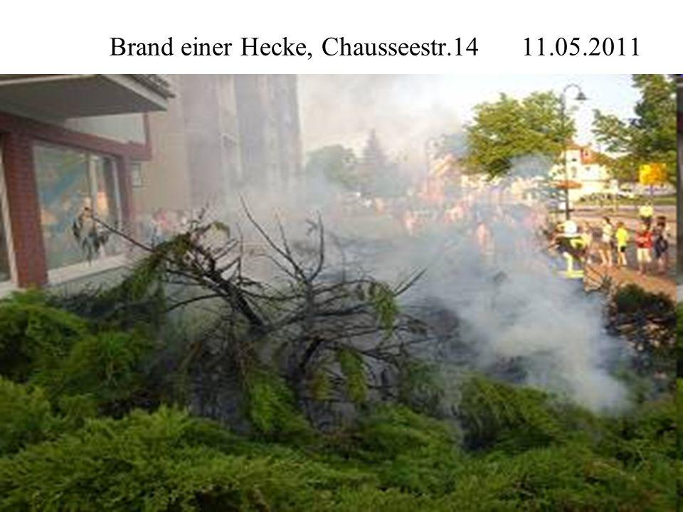 Brand einer Hecke, Chausseestr.14 11.05.2011