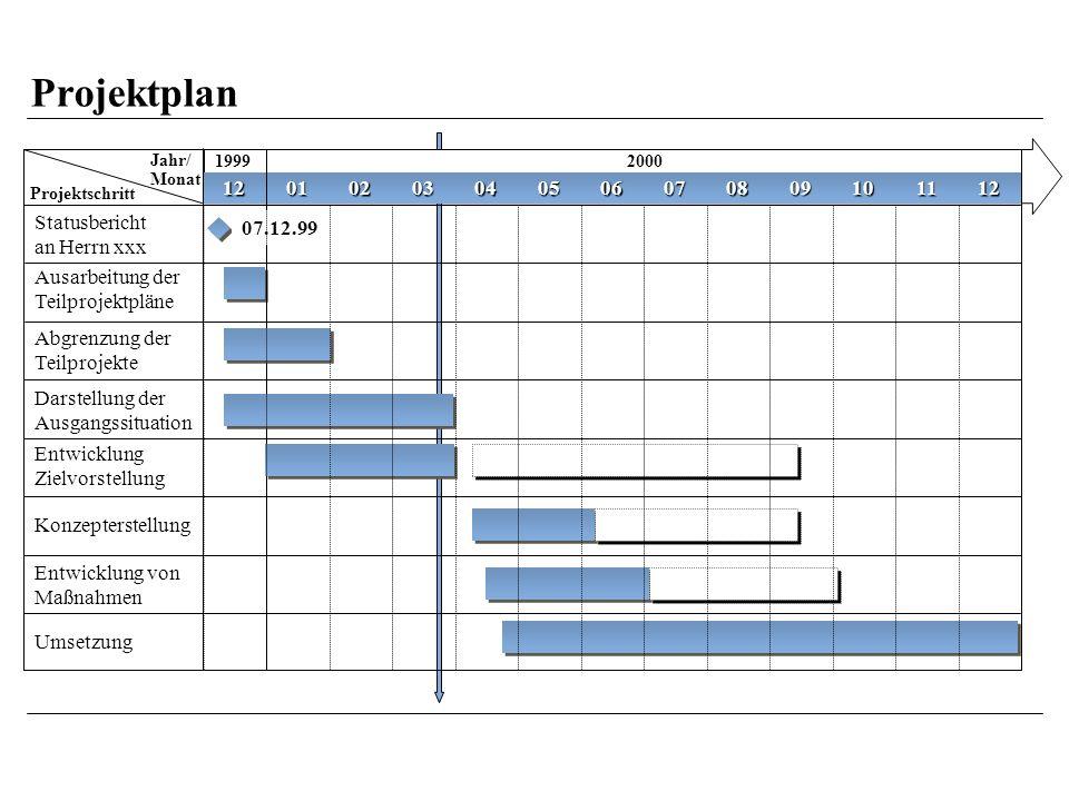 Projektplan Jahr/ Monat. 1999. 2000. Projektschritt. 12. 01. 02. 03. 04. 05. 06. 07. 08.