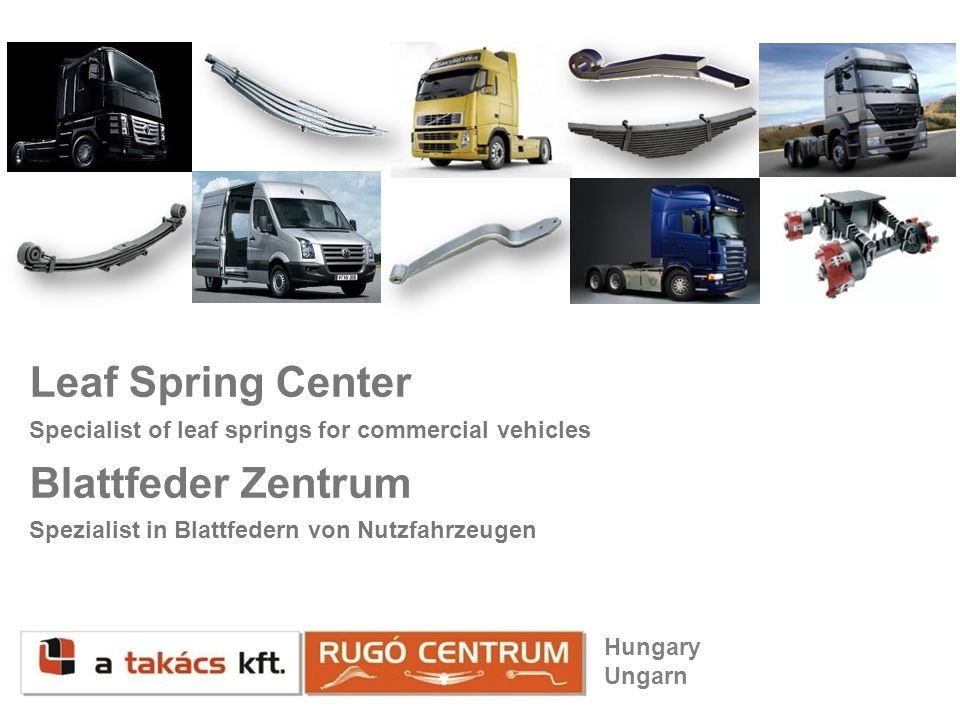 Leaf Spring Center Blattfeder Zentrum