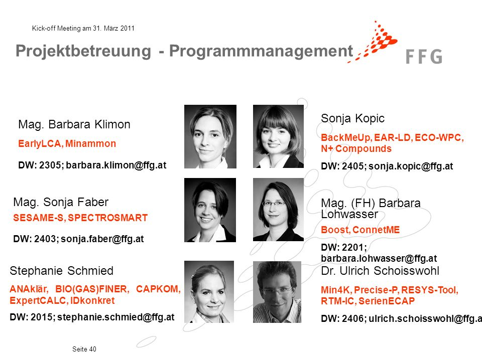 Projektbetreuung - Programmmanagement