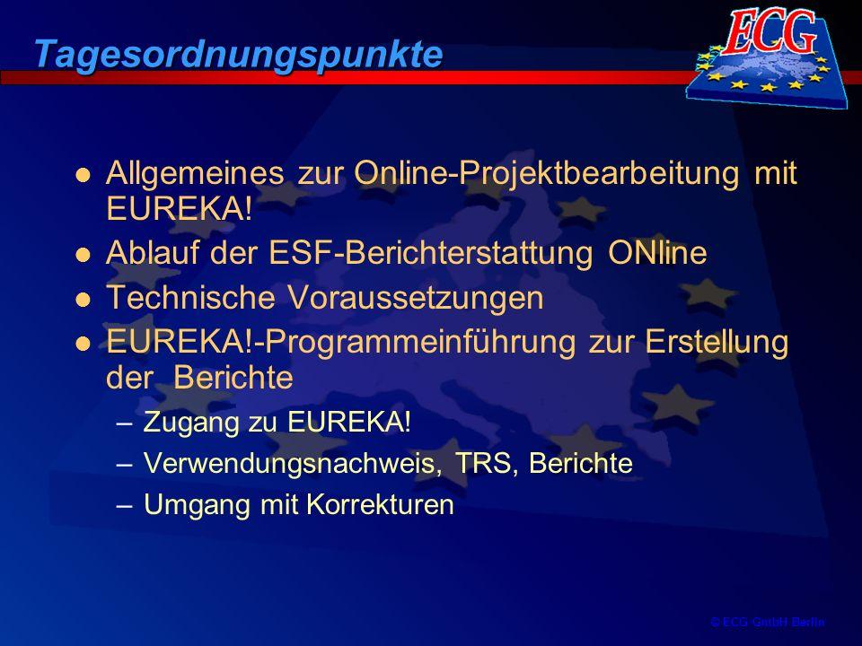 Tagesordnungspunkte Allgemeines zur Online-Projektbearbeitung mit EUREKA! Ablauf der ESF-Berichterstattung ONline.
