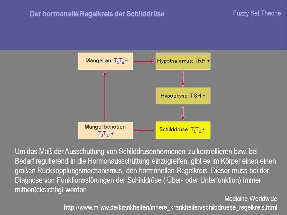 Der hormonelle Regelkreis der Schilddrüse