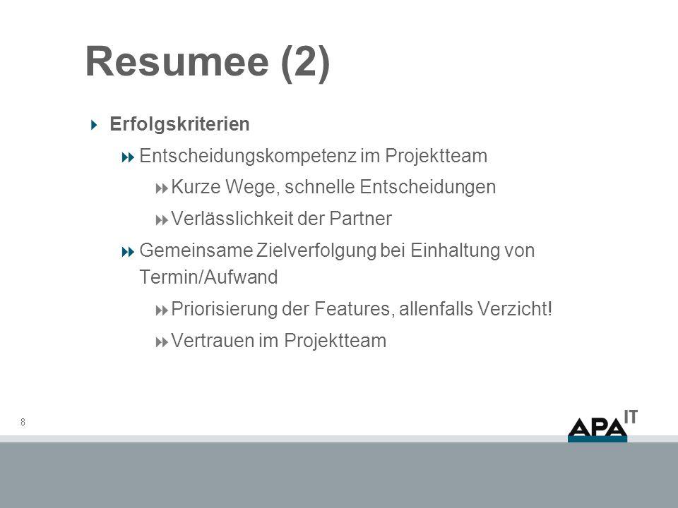 Resumee (2) Erfolgskriterien Entscheidungskompetenz im Projektteam