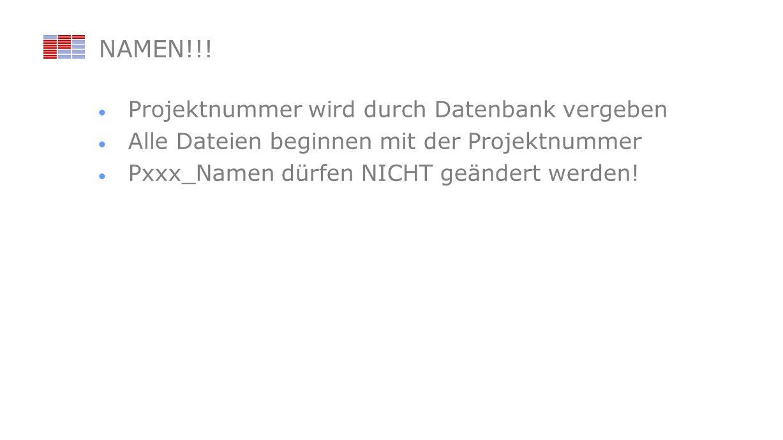 NAMEN!!! Projektnummer wird durch Datenbank vergeben