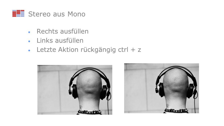 Stereo aus Mono Rechts ausfüllen Links ausfüllen