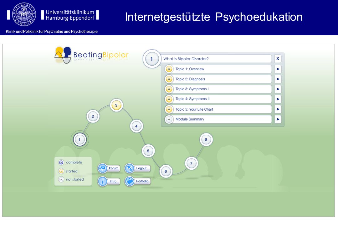 Internetgestützte Psychoedukation