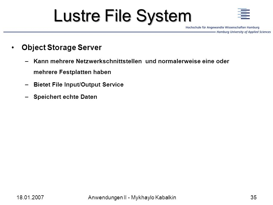 Lustre File System Object Storage Server