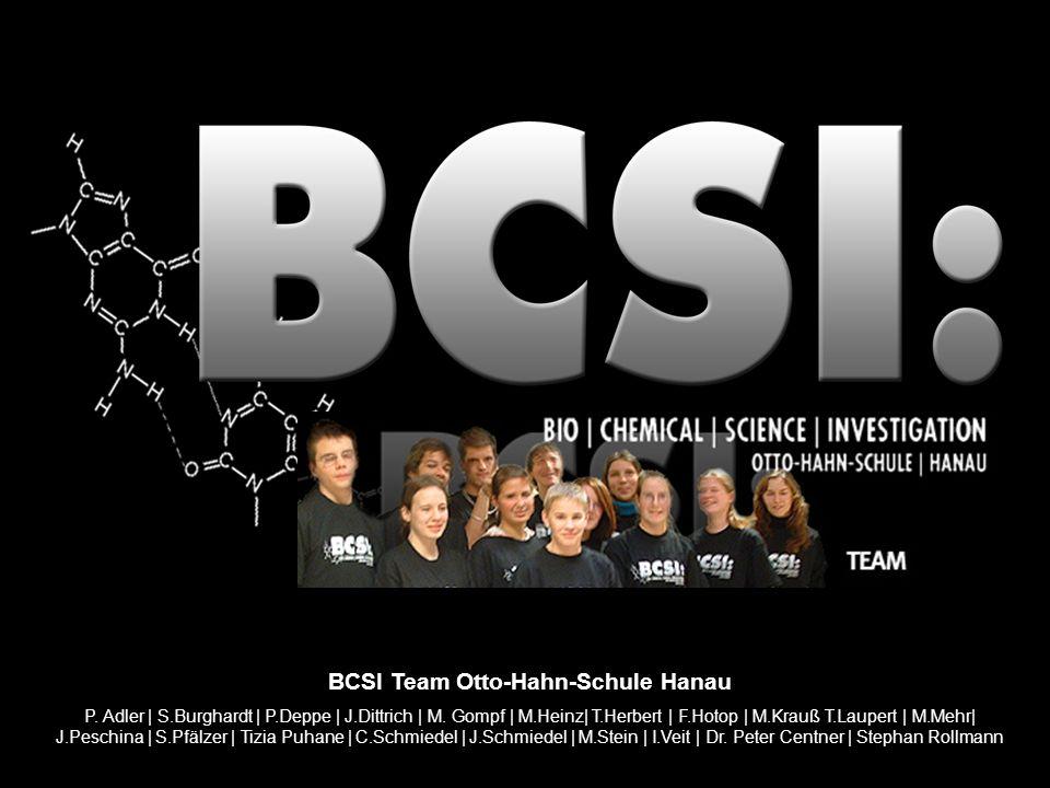 BCSI Team Otto-Hahn-Schule Hanau