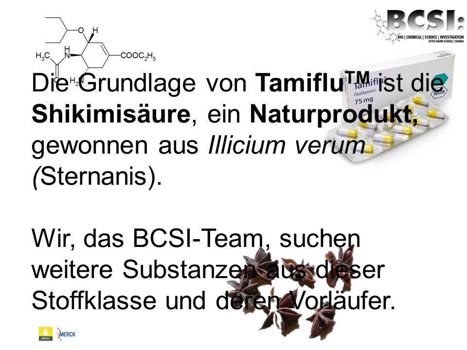 Die Grundlage von TamifluTM ist die Shikimisäure, ein Naturprodukt, gewonnen aus Illicium verum (Sternanis).
