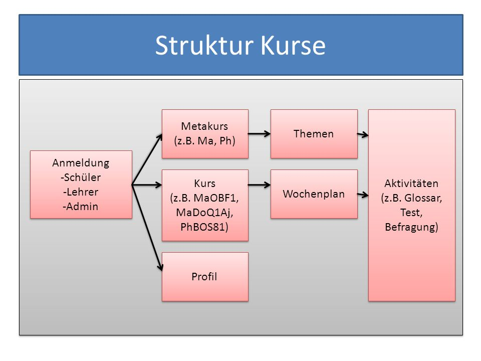 Struktur Kurse Metakurs Themen (z.B. Ma, Ph) Aktivitäten