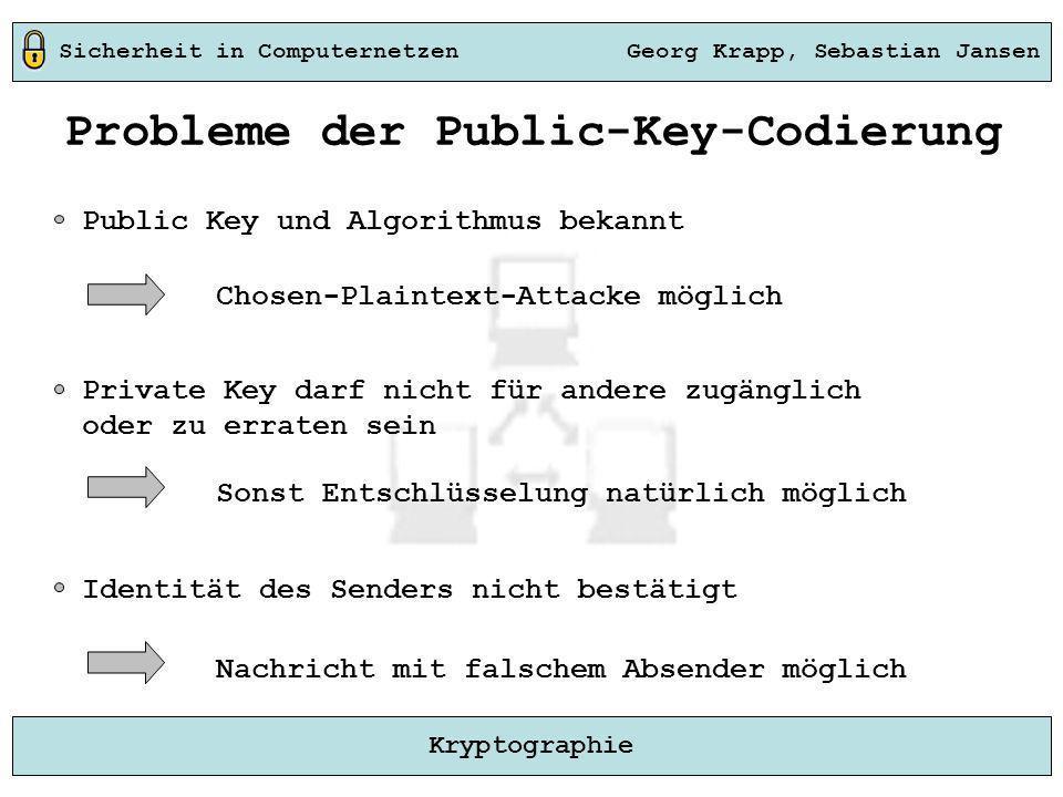 Probleme der Public-Key-Codierung
