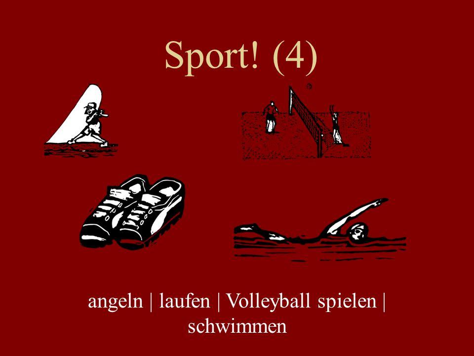 angeln | laufen | Volleyball spielen | schwimmen