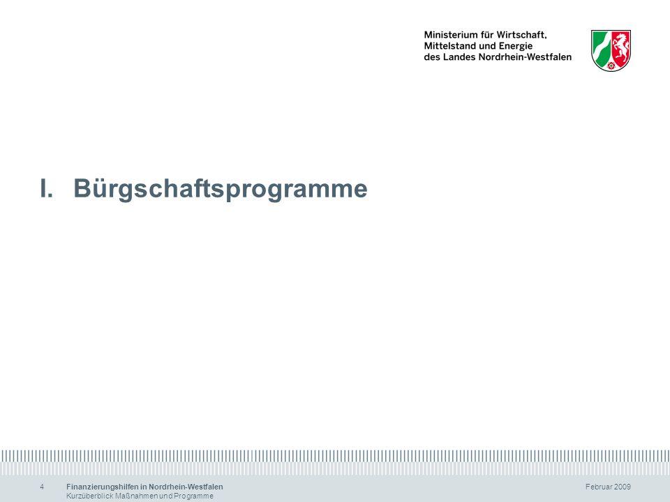 Bürgschaftsprogramme