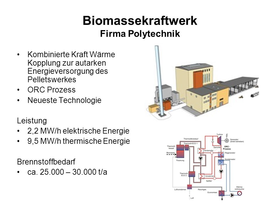 Biomassekraftwerk Firma Polytechnik