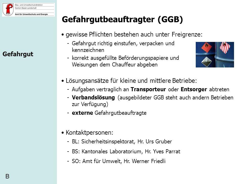 Gefahrgutbeauftragter (GGB)