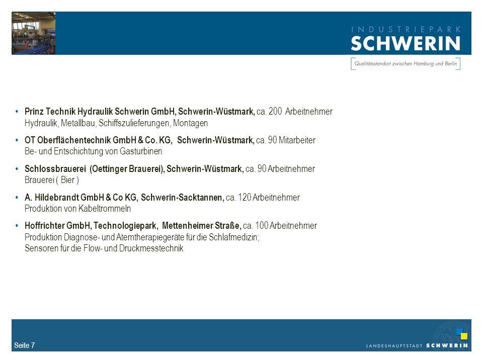 Prinz Technik Hydraulik Schwerin GmbH, Schwerin-Wüstmark, ca