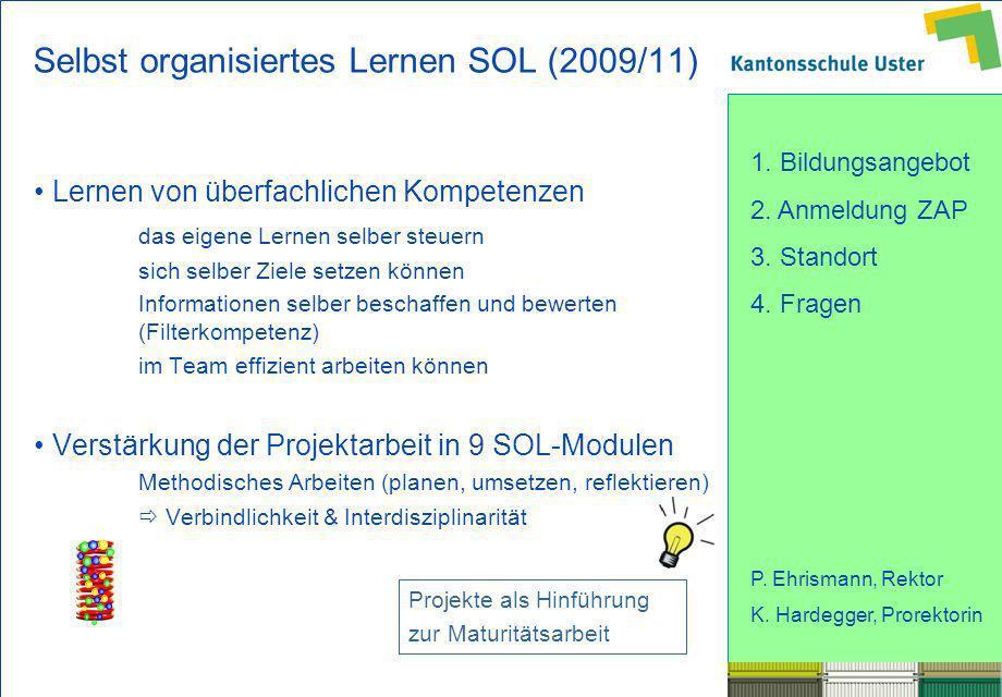 Selbst organisiertes Lernen SOL (2009/11)