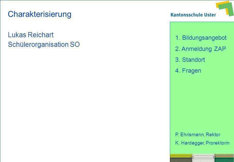 Charakterisierung Lukas Reichart Schülerorganisation SO