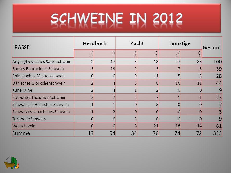 Schweine in 2012 RASSE Herdbuch Zucht Sonstige Gesamt ♂ ♀ 100 39 28 44