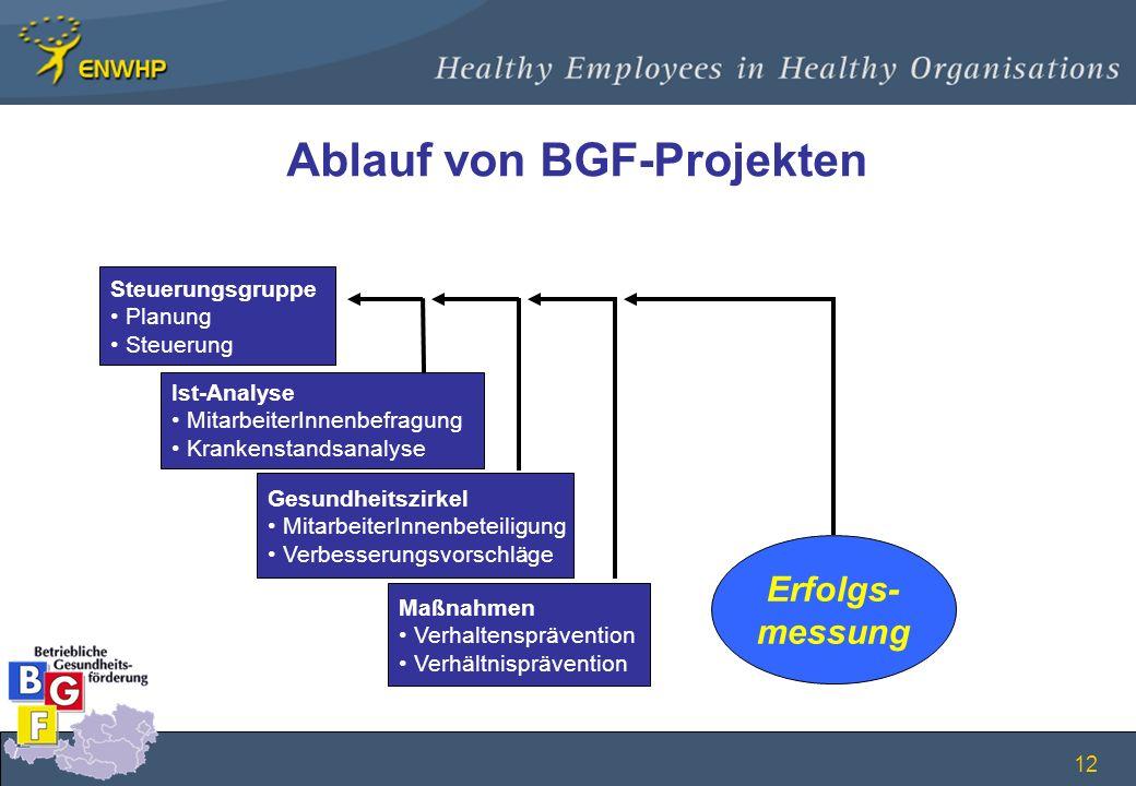Ablauf von BGF-Projekten