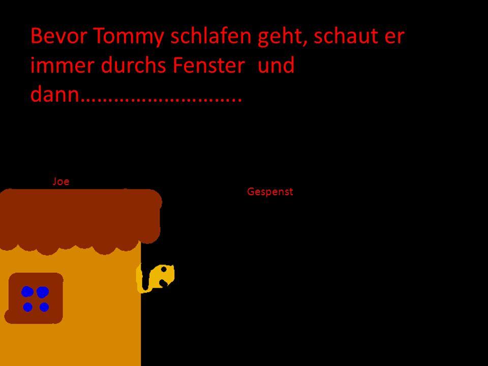 Bevor Tommy schlafen geht, schaut er immer durchs Fenster und dann………………………..