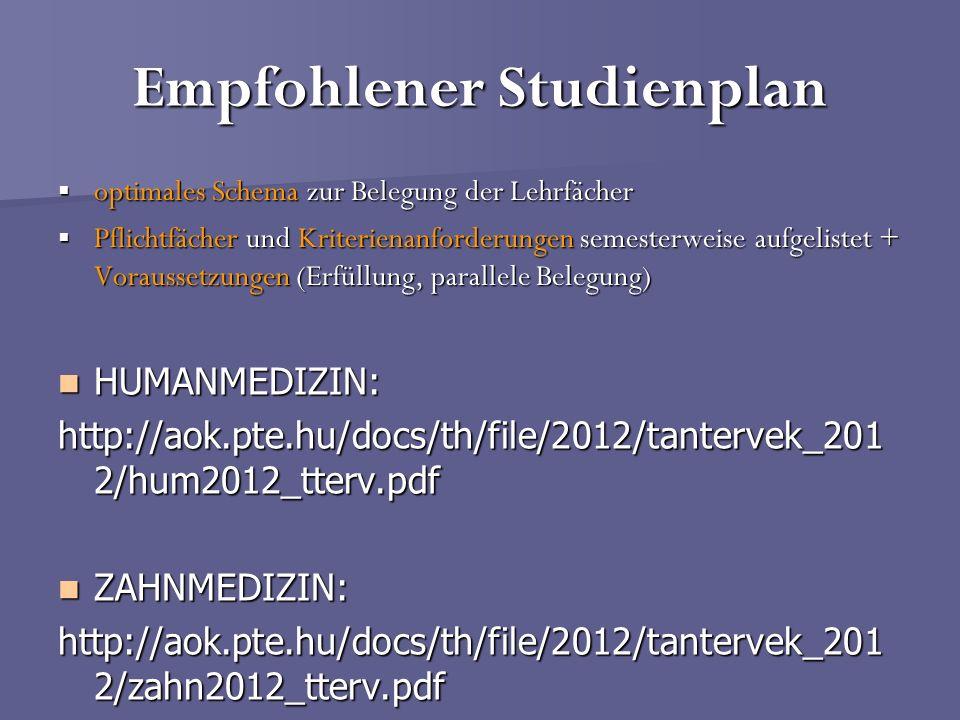 Empfohlener Studienplan