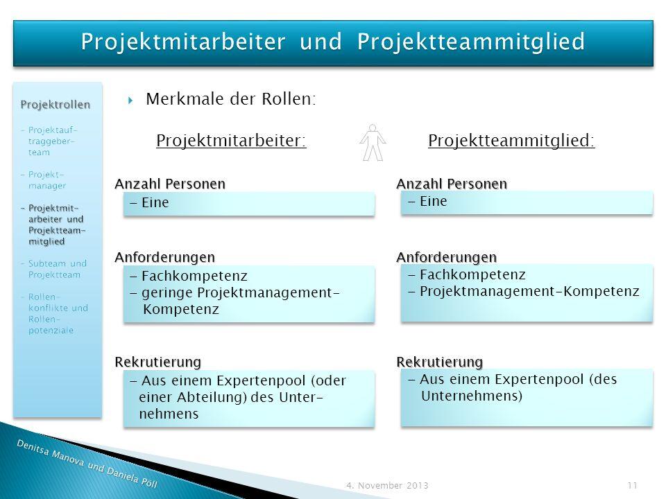 Projektmitarbeiter und Projektteammitglied