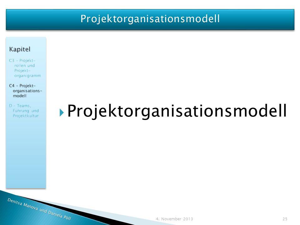 Projektorganisationsmodell