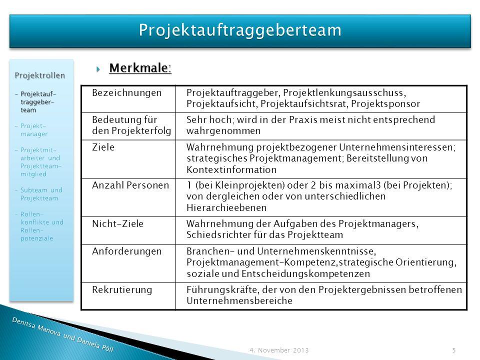 Projektauftraggeberteam