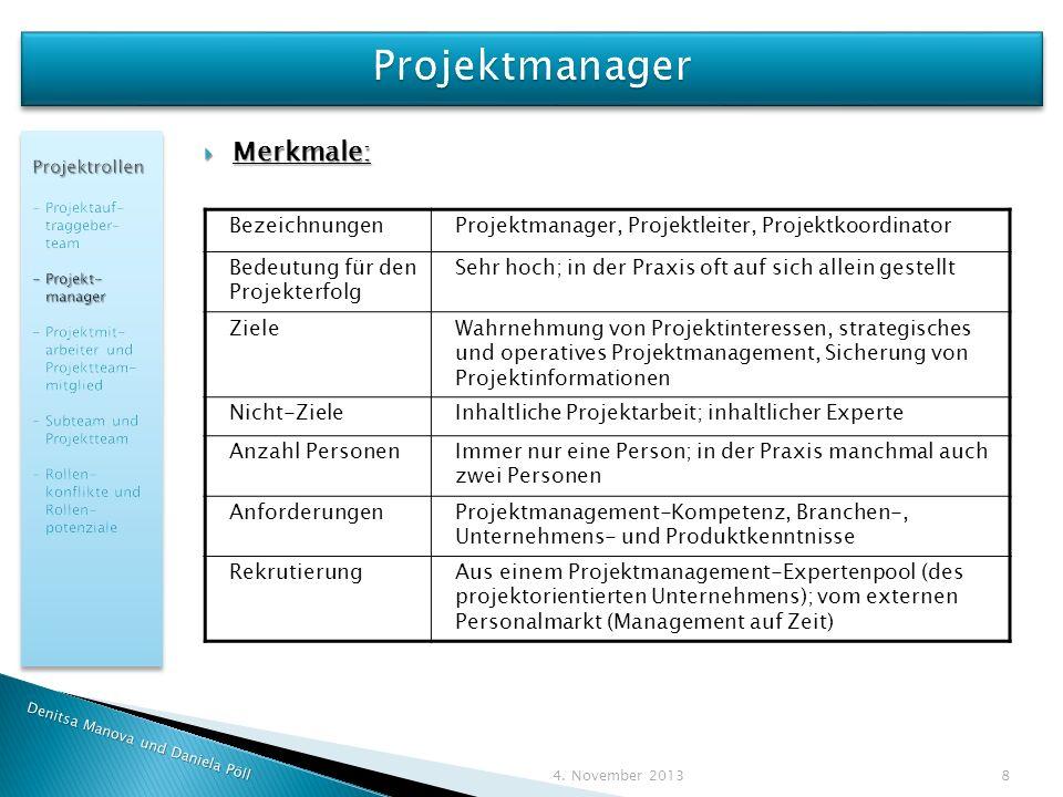 Projektmanager Merkmale: Bezeichnungen