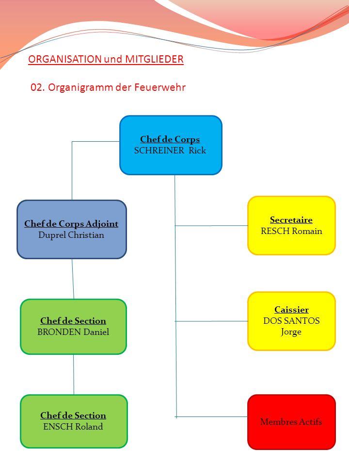 ORGANISATION und MITGLIEDER 02. Organigramm der Feuerwehr