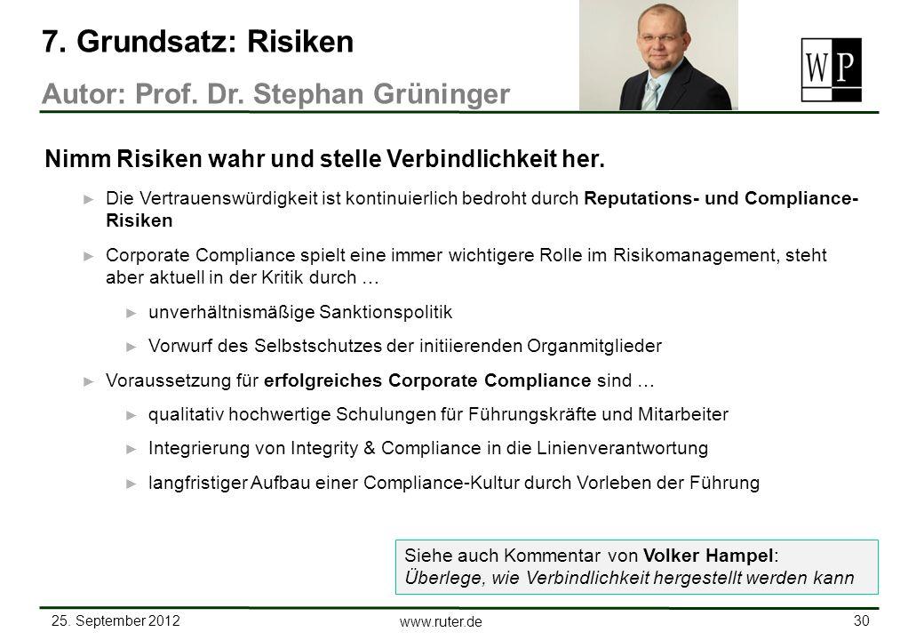 7. Grundsatz: Risiken Autor: Prof. Dr. Stephan Grüninger