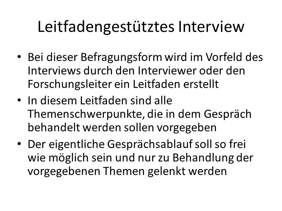 Leitfadengestütztes Interview