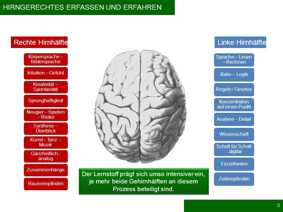 Hirngerechtes Erfassen und Erfahren