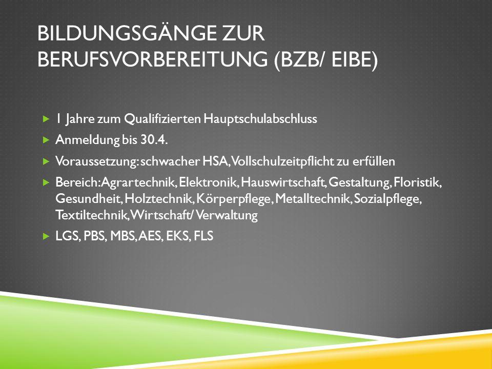 Bildungsgänge zur Berufsvorbereitung (BzB/ EiBe)