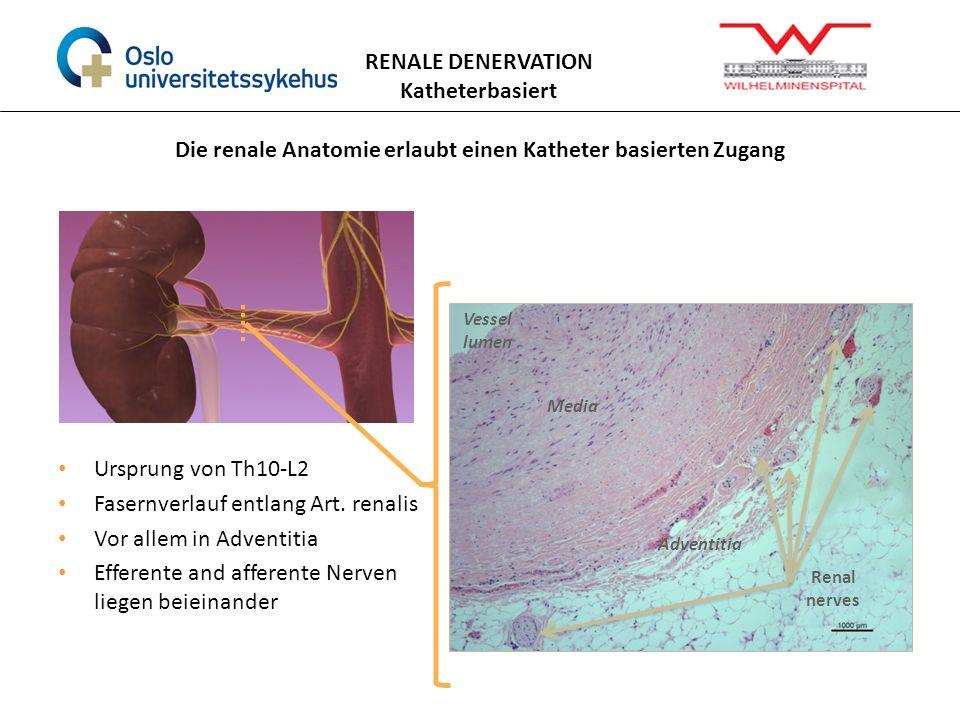 Berühmt Praxis Anatomie Lab 3.0 Fotos - Menschliche Anatomie Bilder ...
